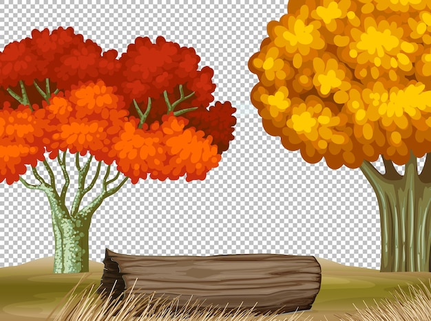 Two big tree in autumn transparent scene Free Vector