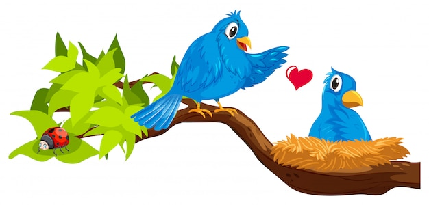 Two blue birds in nest Free Vector
