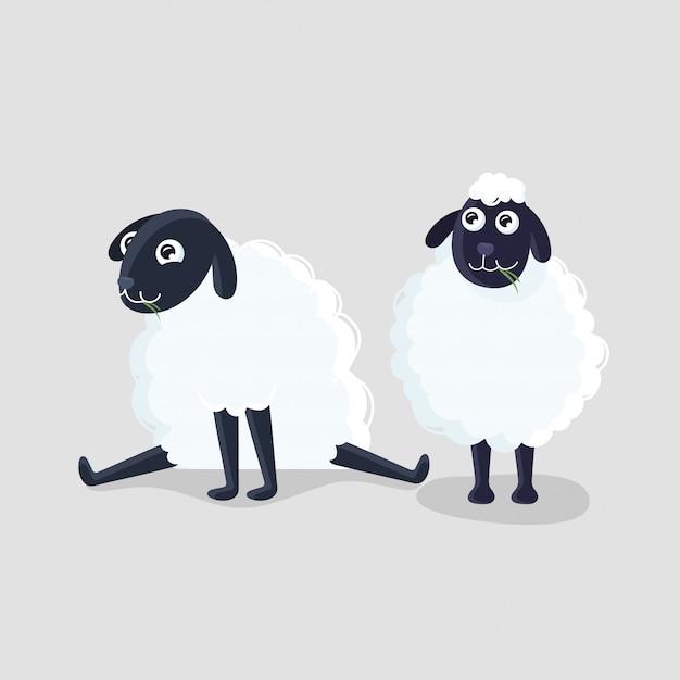 Два мультфильм овец в разных позах на сером фоне. Premium векторы