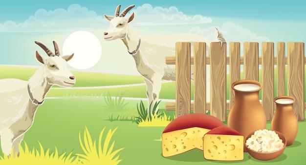 草の上にチーズ、カッテージチーズ、牛乳があるフェンスの近くの2つのヤギと牧草地。リアル。 無料ベクター
