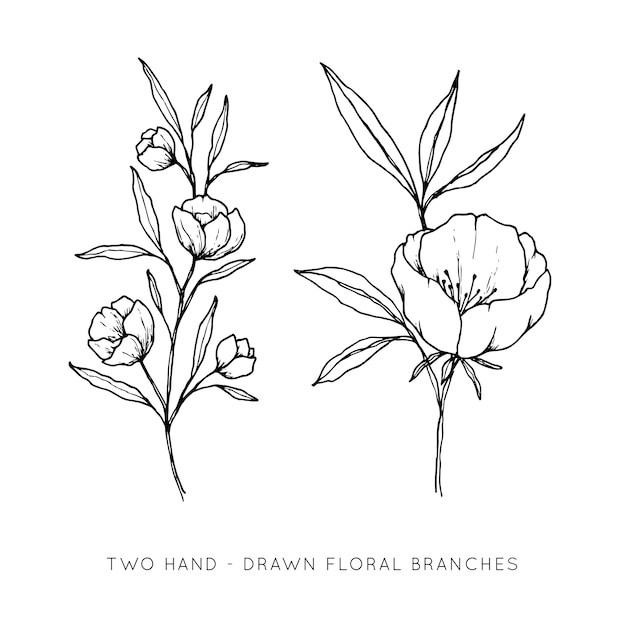 Two hand drawn floral branches Premium Vector