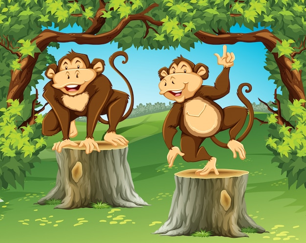 Two monkeys in the jungle Free Vector