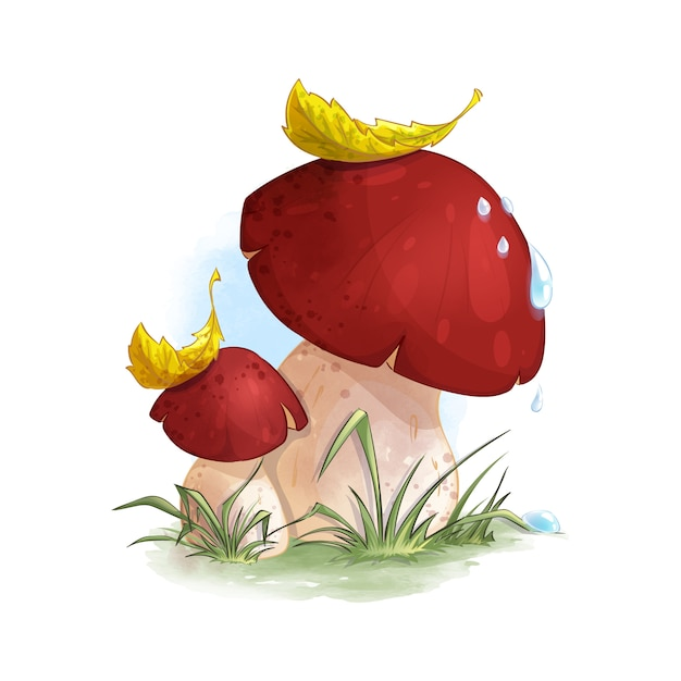 Two mushrooms boletus in the forest grass. Premium Vector