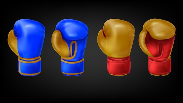 Two pairs of leather boxing gloves Free Vector