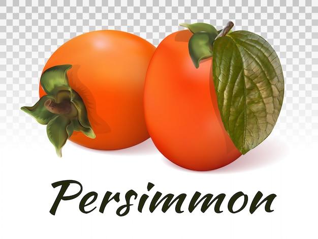 Two persimmons Premium Vector
