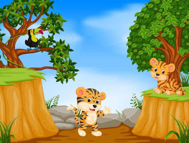 Two tiger and toucan with mountain cliff scene Premium Vector