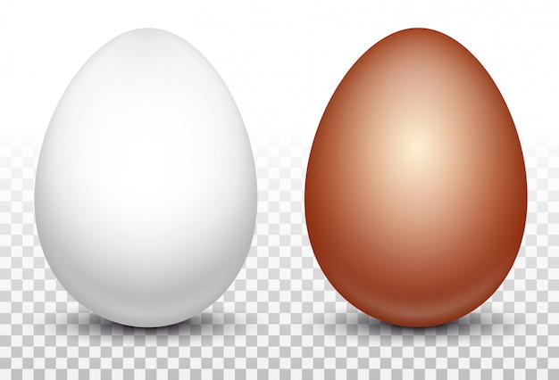 Two white and red chicken eggs Premium Vector