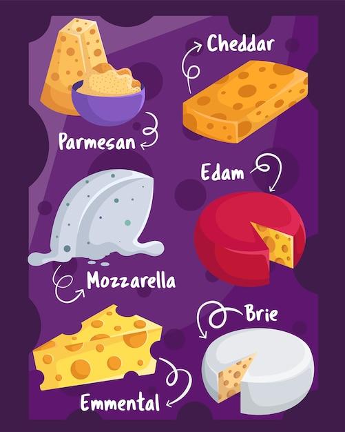 Type of cheese Premium Vector