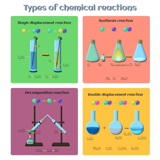Types of chemical reactions infographics. Premium Vector