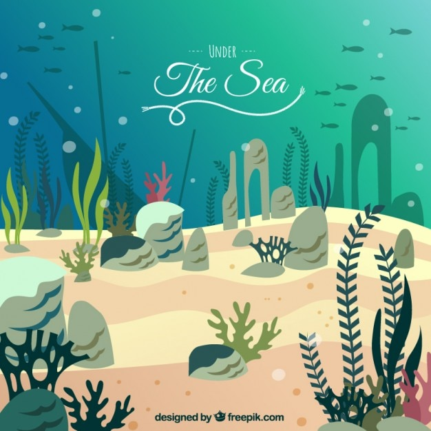 Under The Sea Background 903818