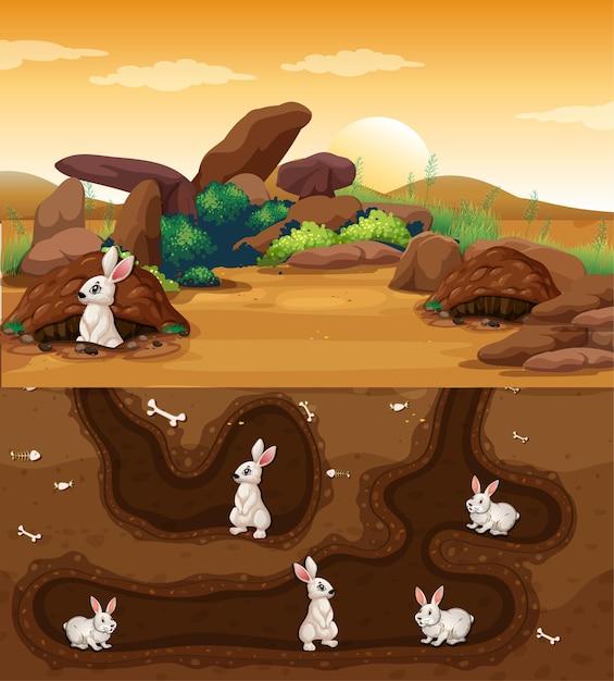 ウサギがたくさんいる地下の動物の穴 無料ベクター
