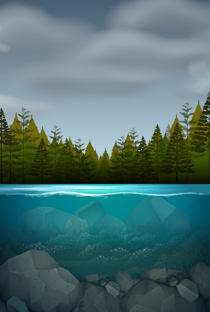 An underwater nature landscape Free Vector