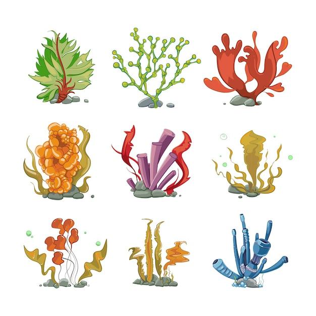 Подводные растения в мультяшном стиле вектор. морская жизнь, подводное море, иллюстрация морских водорослей Бесплатные векторы