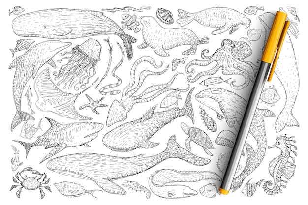 水中世界の動物の落書きセット。手描きのイルカ、カニ、タコ、オットセイ、魚、クラゲ、ヒトデのタツノオトシゴのコレクションが分離されました。 Premiumベクター