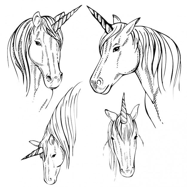 Unicorn hand drawn Premium Vector