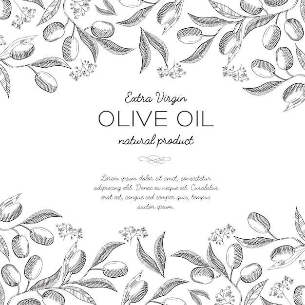 Верхний и нижний горизонтальный элегантный орнамент с гравировкой оливковых пучков Бесплатные векторы