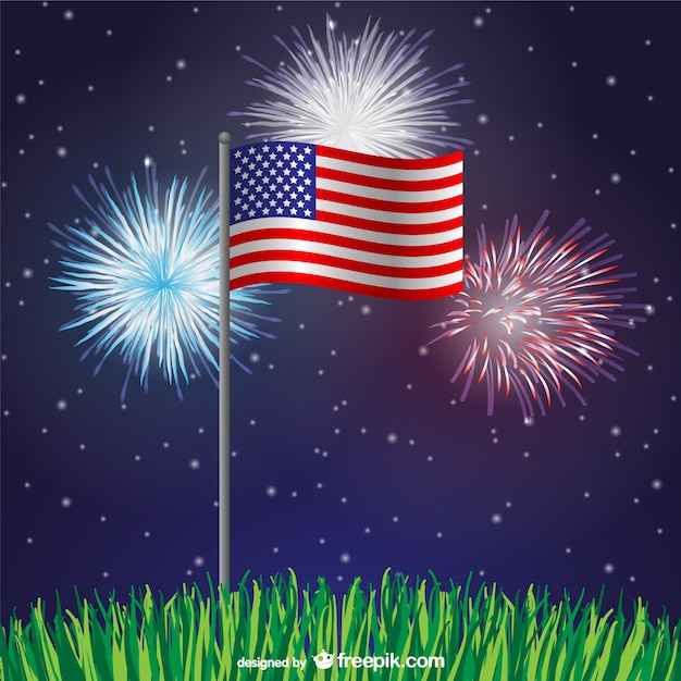 usa flag at night with fireworks free vector