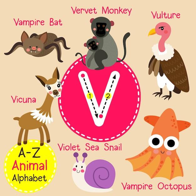手紙v動物園のアルファベット Premiumベクター
