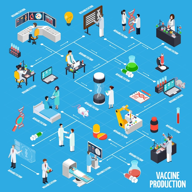 Vaccine production infographics layout Free Vector