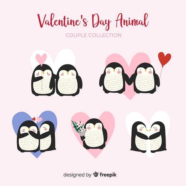 Valentine's day penguin couple collection Free Vector