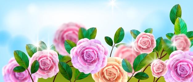 バレンタインデーの花の愛のグリーティングカード、バラの茂み、ピンクの花の頭、緑の葉の背景。 Premiumベクター