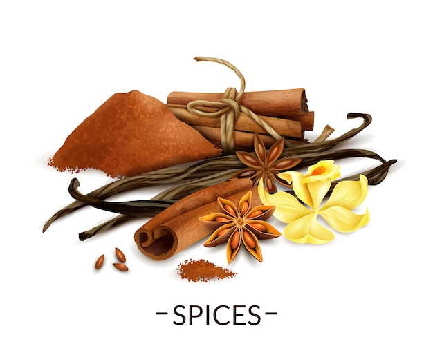 Vanilla flower and dried beans with star anise cinnamon powder and sticks Free Vector