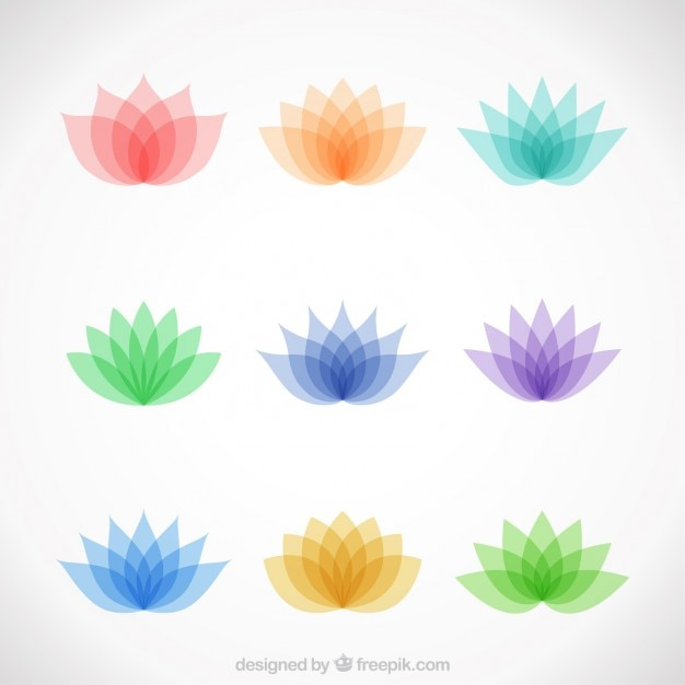 Variety of colorful lotus flowers Free Vector