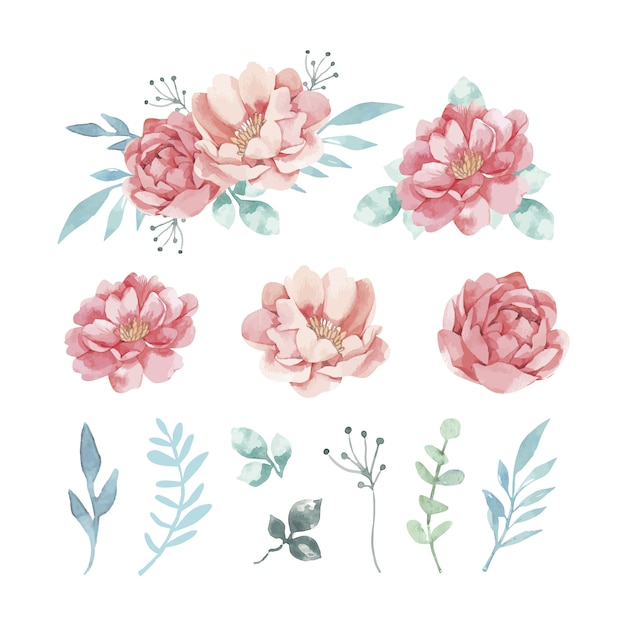Variety of decorative watercolor flowers and leaves Free Vector