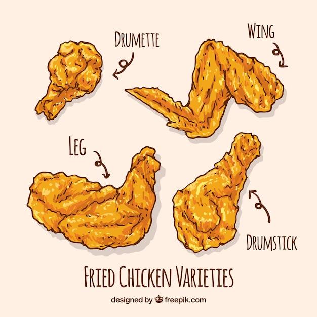 Varietà di pollo fritto disegnato a mano Vettore gratuito