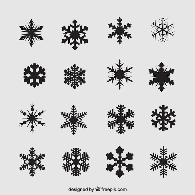 Variety of black snowflakes Vector | Premium Download