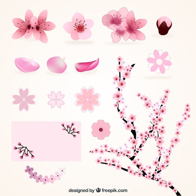 Variety of cherry blossoms Free Vector