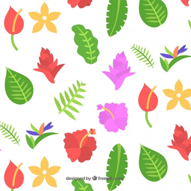 Variety of exotic flowers background