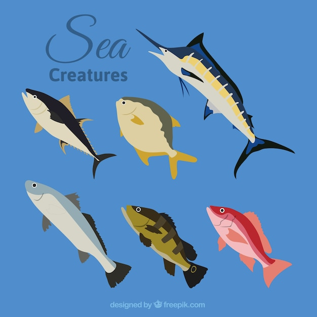 Variety of fishes Free Vector