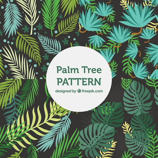 variety of flat patterns with decorative palm tree leaves vector