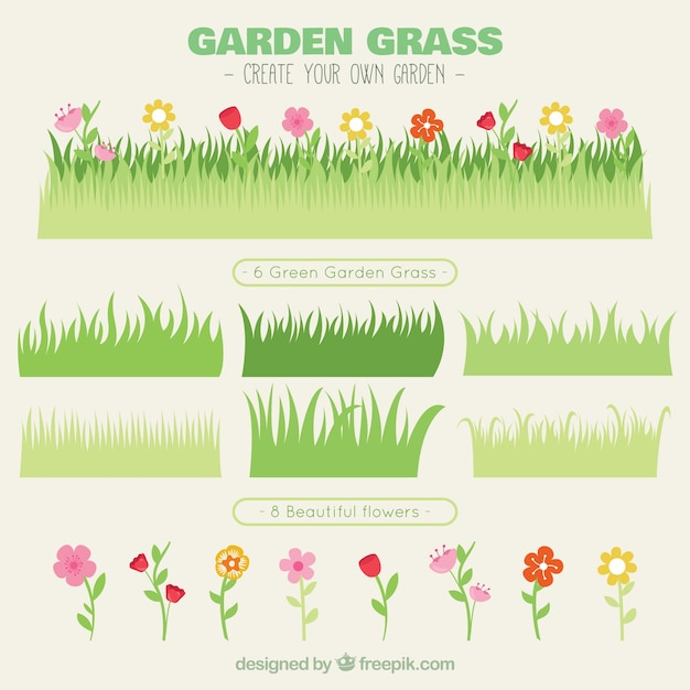 Variety of grass with flowers Free Vector
