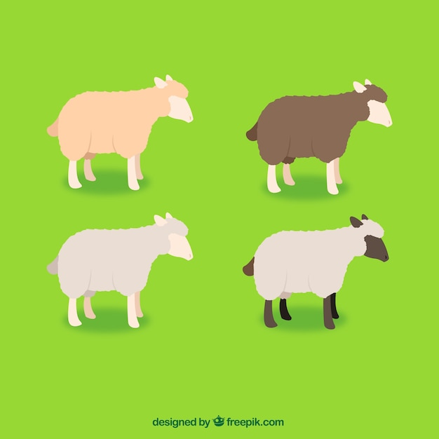 Разнообразие овец Бесплатные векторы