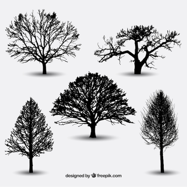 Variety of tree silhouettes Premium Vector