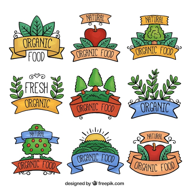Variety of watercolor organic food\ stickers