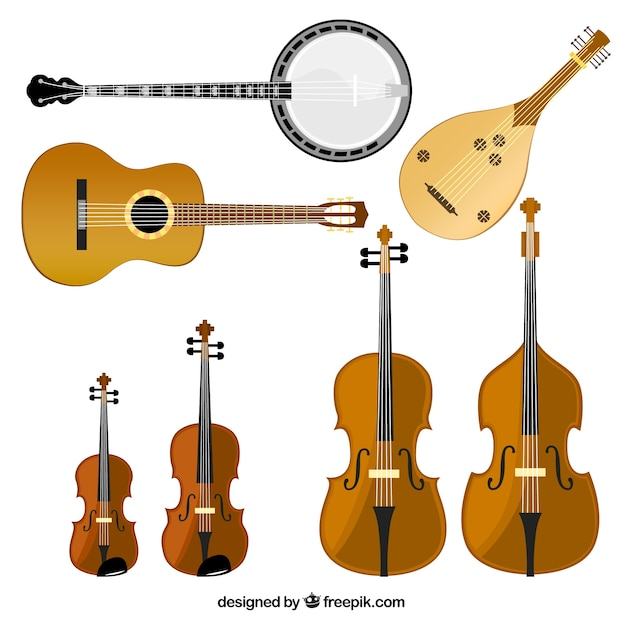 Variety of stringed instruments Free Vector