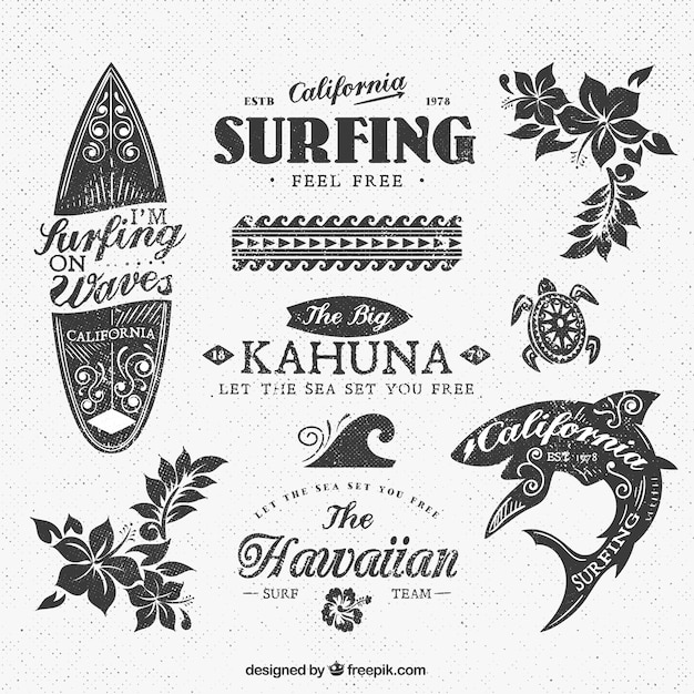 Variety of surf insignias Free Vector