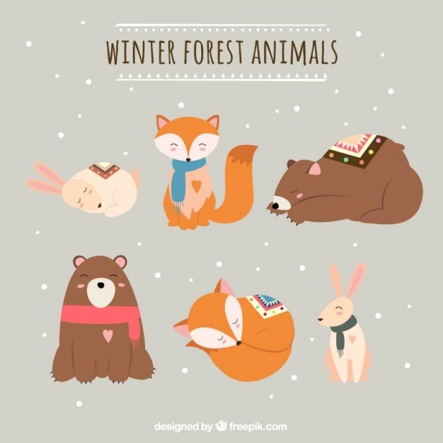 Various animals of the forest in the winter\ season