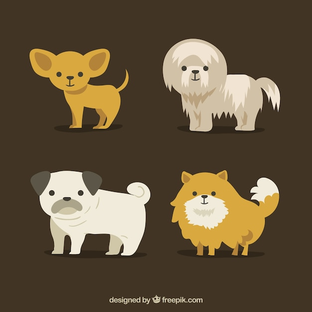 Various cute dogs