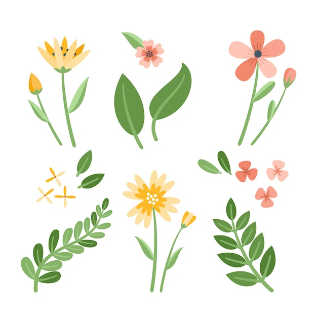 Various flowers with leaves flat design collection Free Vector