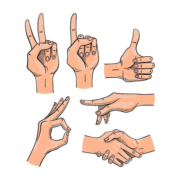 女性の手のさまざまなジェスチャー。 Premiumベクター