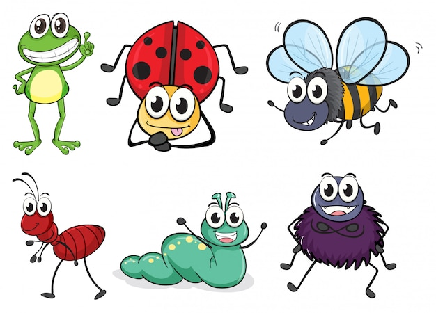 Various insects and animals Free Vector