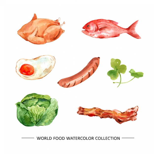 Various isolated watercolor food illustration Free Vector