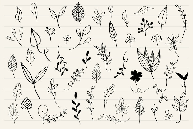 Various leaves doodle collection vector Free Vector