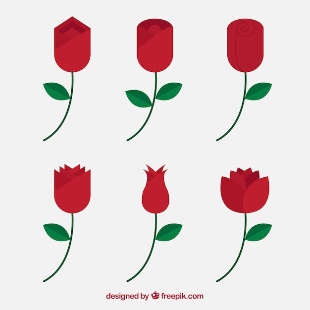 Various red roses in flat design
