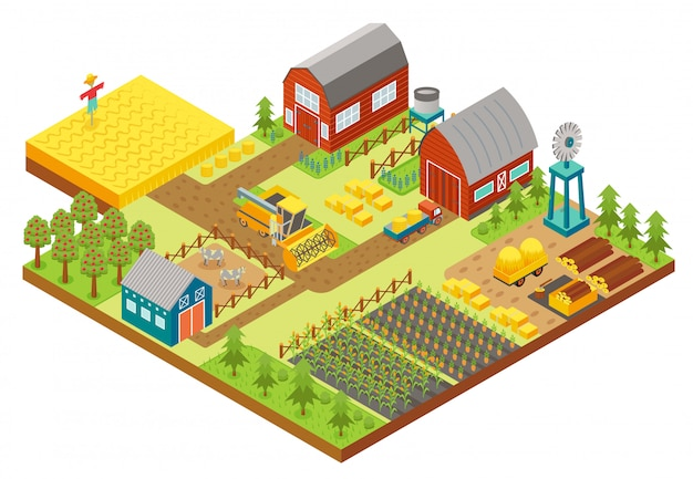 Vector 3d isometric rural farm with mill, garden field, trees, tractor combine harvester, house, windmill and warehouse for app and game. Premium Vector