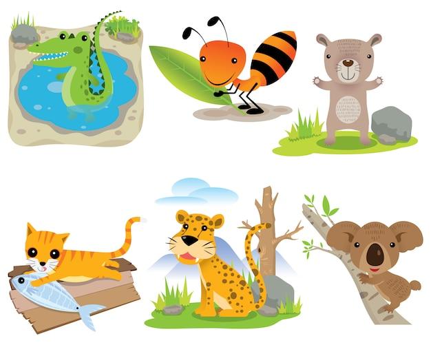 Векторный набор животных, крокодил, муравей, медведь, кошка, леопард, коала, Premium векторы